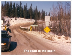 #3B road to cabin