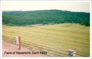 1993 dam face