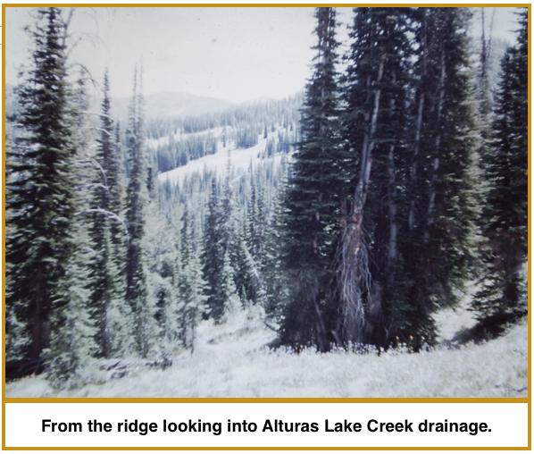 into Alt Lake Creek