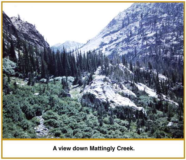 mattingly-creek