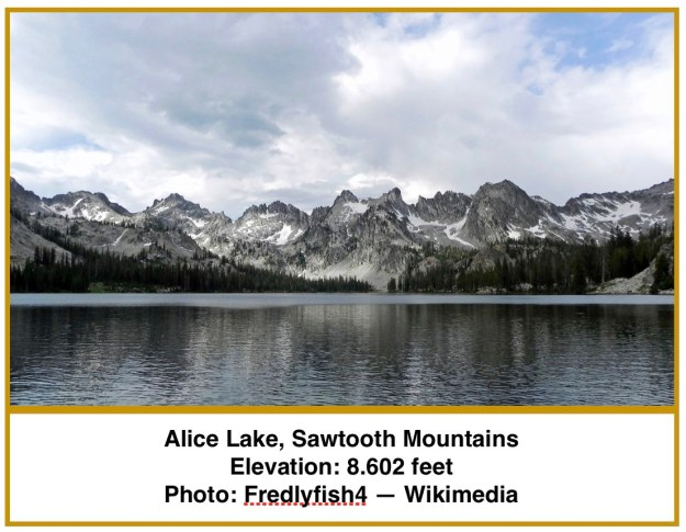 Alice Lake INT.jpg