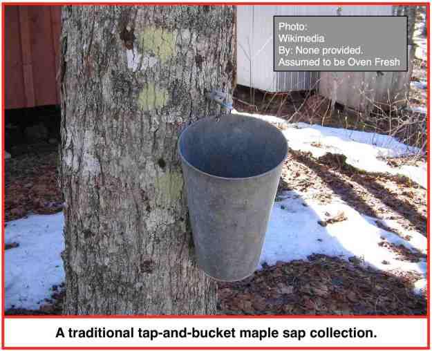 Bucket INT
