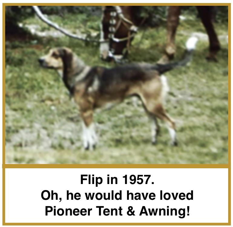 Flip 1957 INT.jpg